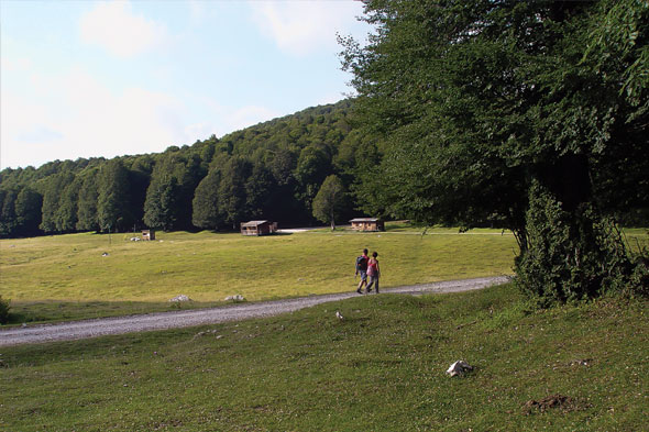 Camping Le Foci - Opi